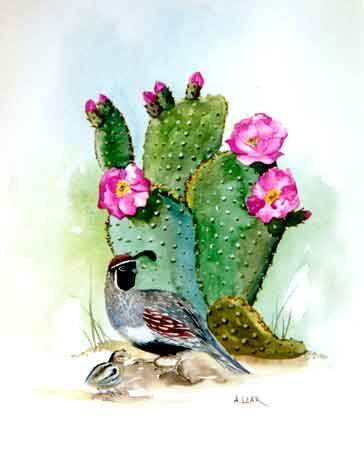 Quail and Cactus watercolor
