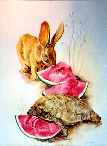 Rabbit and Tortoise with Watermelon watercolor painting